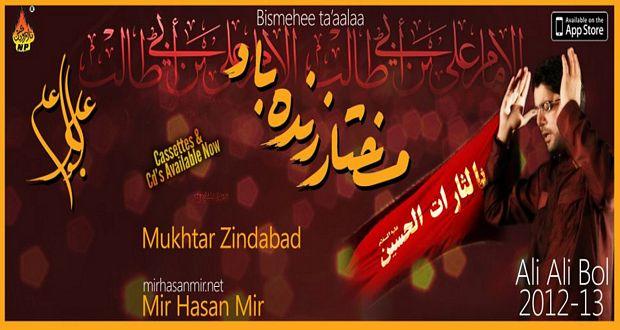 Mir Hasan Mir 2012-13