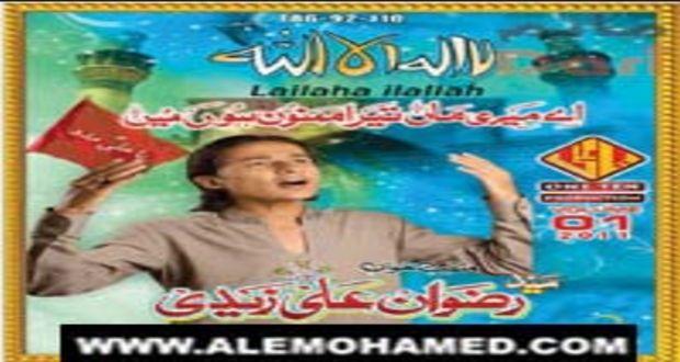 Rizwan Ali Zaidi 2011-12