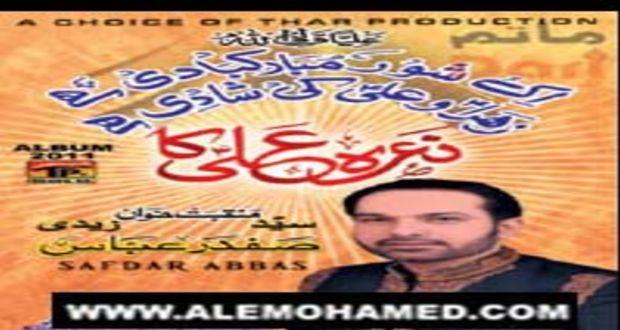 Safdar Abbas Zaidi 2011-12
