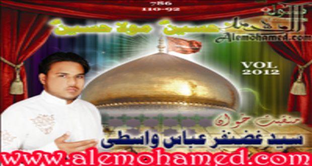 Syed Gazanfar Abbas 2012-13