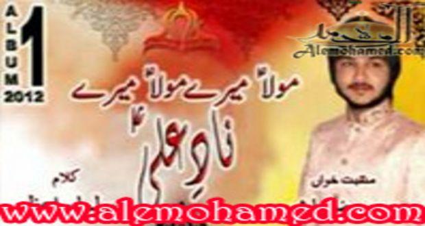 sm_mohsin raza manqabat 2012