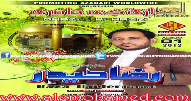 Raza Haider 2012-13