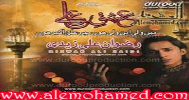 Rizwan Ali Zaidi 2012-13
