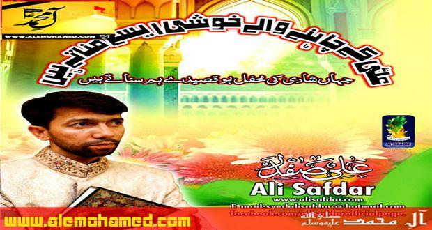 Ali Safdar 2014-15