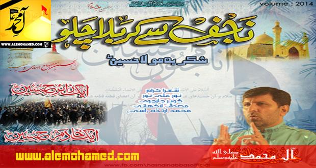 Hasnain Abbas 2014-15