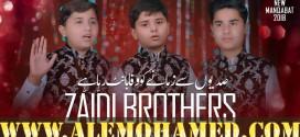 Zaidi Brothers Manqabat 2018-19