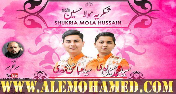 Zaidi Brothers & Hasnain Mehdi Manqabat 2019-20